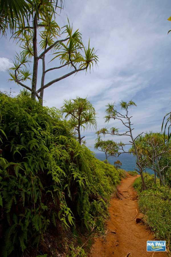 Kauai hiking on the Nā Pali Coast.